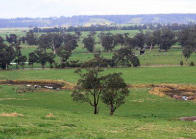 Wall Creek Sept 2010