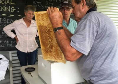 Mick removing cell caps-bee-keeping