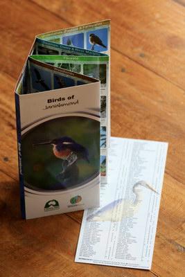 birds-of-jarrahmond
