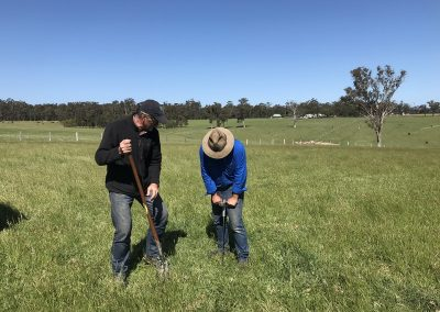 soil-gippsland